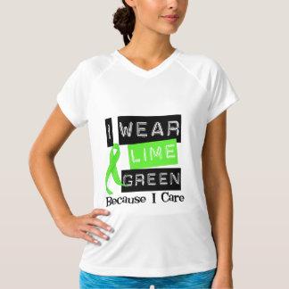 Lymphoma I Wear Lime Green Ribbon Because I Care T Shirt