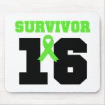 LYMPHOMA Survivor 16 YEARS Mouse Pad