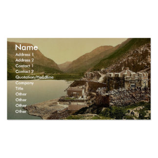 Lyn Peris Pass, Llanberis, Wales rare Photochrom Double-Sided Standard Business Cards (Pack Of 100)