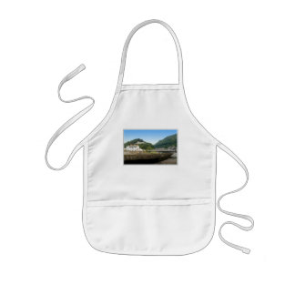 Lynmouth and Hills. Apron