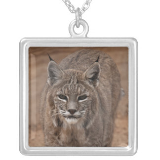 Lynx 5214 square pendant necklace
