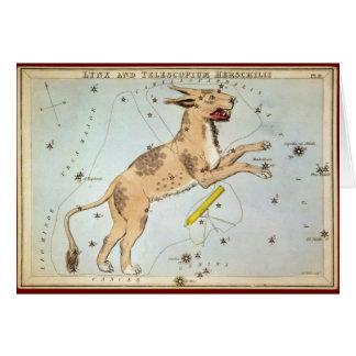 Lynx and Telescopium Herschilii Card