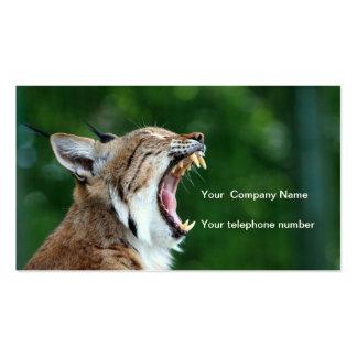 Lynx bobcat beautiful photo custom business card