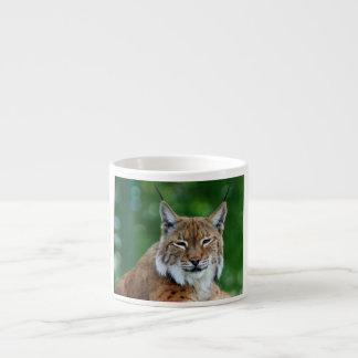 Lynx, bobcat beautiful photo espresso mug