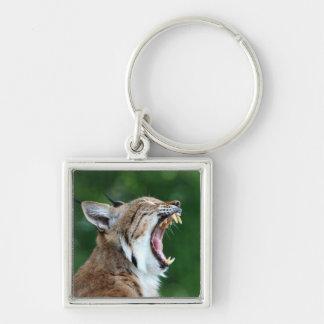 Lynx, bobcat beautiful photo keychain