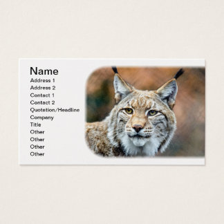 Lynx Bobcat Wildlife Predator Cat Business Card