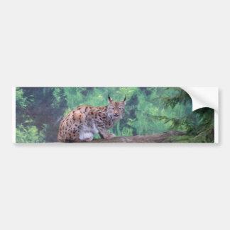 Lynx Bumper Sticker