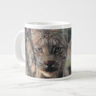 Lynx, Lynx canadensis, Denali National Park, Large Coffee Mug