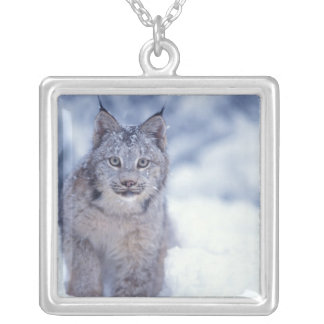 lynx, Lynx lynx, in the snow in the foothills of Square Pendant Necklace