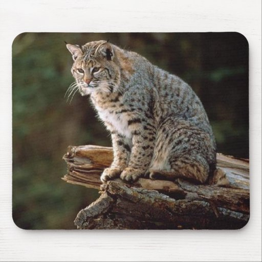 Lynx Mouse Pad