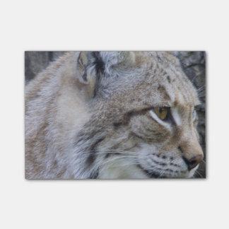 Lynx Post-it Notes