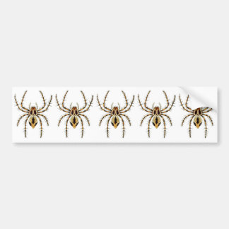 Lynx Spider Bumper Sticker