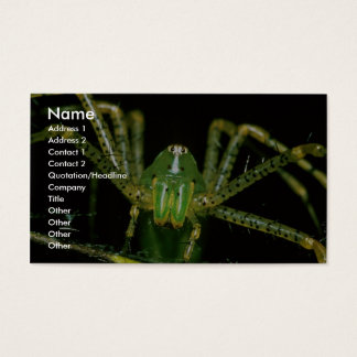 Lynx Spider Business Card