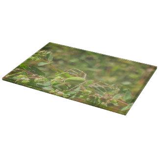 Lynx Spider Cutting Board