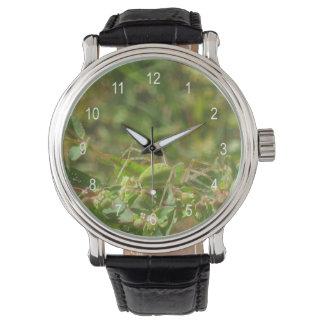 Lynx Spider Wrist Watch