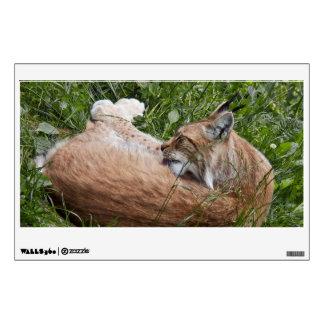 Lynx washing rectangle wall decal