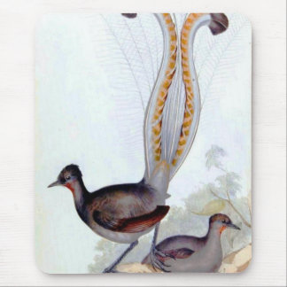 Lyre Bird Vintage Poster Mouse Pad