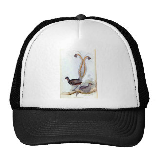 Lyre Bird Vintage Poster Trucker Hat