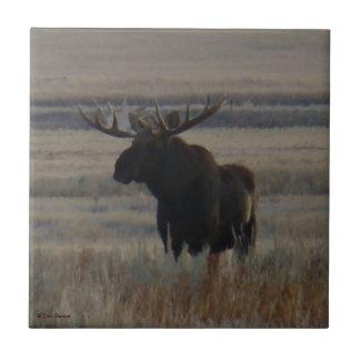 M0001 Bull Moose Small Square Tile