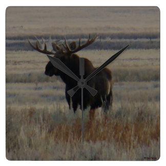 M0001 Bull Moose Square Wall Clock