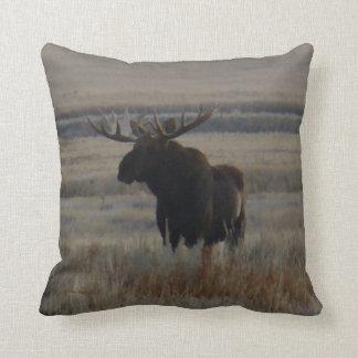 M0001 Bull Moose Throw Pillow