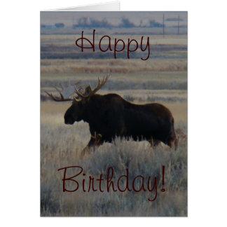 M0002 Bull Moose Greeting Card