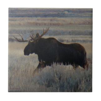 M0002 Bull Moose Small Square Tile