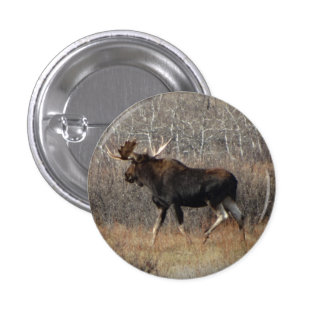 M0008 Bull Moose 1 Inch Round Button