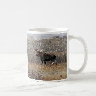 M0008 Bull Moose Classic White Coffee Mug