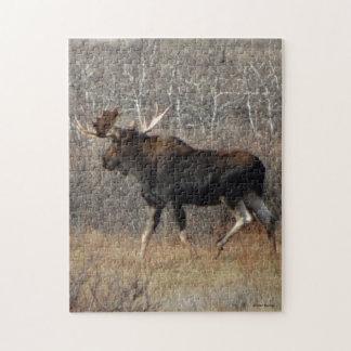 M0008 Bull Moose Puzzles