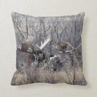 M0009 Bull Moose Laying Throw Pillow