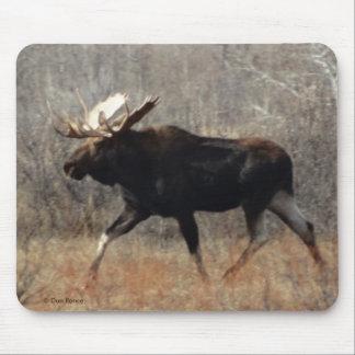 M0010 Bull Moose Mouse Pad