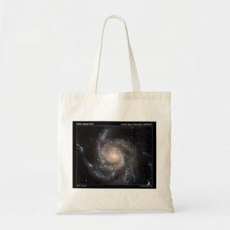 M101 Spiral Galaxy Canvas Bag
