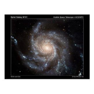 M101 Spiral Galaxy Postcard