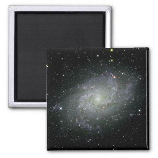 M33 Galaxy Magnet