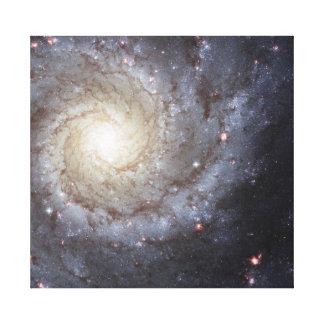 M74 Galaxy Canvas Print