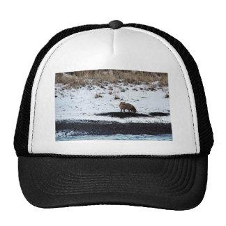 M V Selendang Ayu Oil Spill Unalaska 2004 Mesh Hat