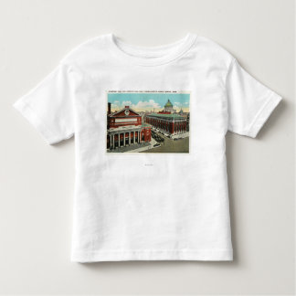 MA Avenue View of Symphony, Horticultural Toddler T-shirt
