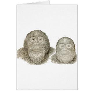 Ma & Pa - THE BABOON COUPLE Card