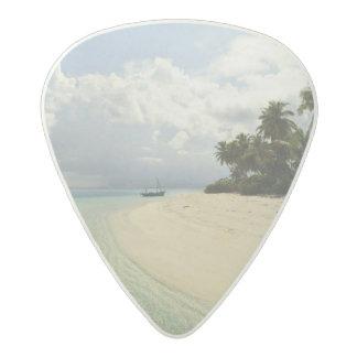 Maadugalla Island, North Huvadhoo Atoll, Acetal Guitar Pick