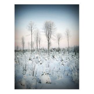 Maalaa de Talvi taivaan Postal