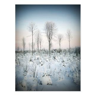 Maalaa de Talvi taivaan Tarjetas Postales