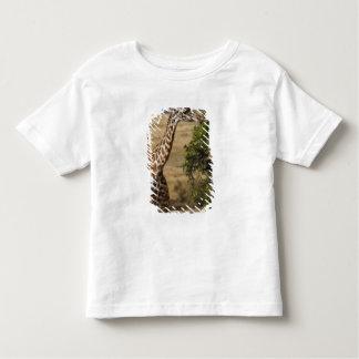 Maasai Giraffe (Giraffe Tippelskirchi) as seen 2 Toddler T-shirt