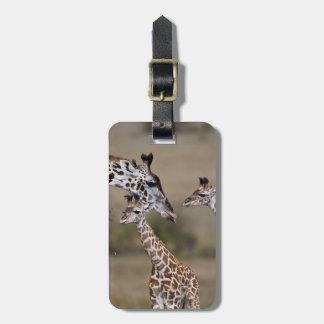 Maasai Giraffe (Giraffe Tippelskirchi) as seen Bag Tag