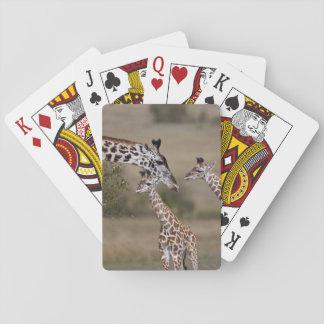Maasai Giraffe (Giraffe Tippelskirchi) as seen Card Deck