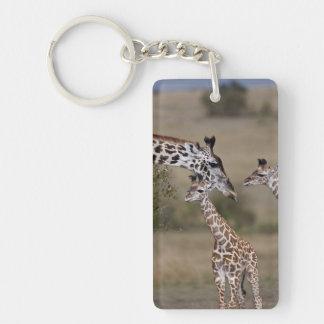 Maasai Giraffe (Giraffe Tippelskirchi) as seen Keychain
