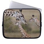 Maasai Giraffe (Giraffe Tippelskirchi) as seen Laptop Sleeves