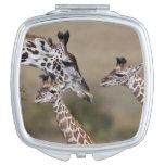 Maasai Giraffe (Giraffe Tippelskirchi) as seen Mirrors For Makeup