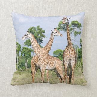 Maasai Giraffe Throw Pillow