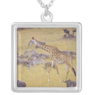 Maasai Giraffes roaming across the Maasai Mara 2 Square Pendant Necklace